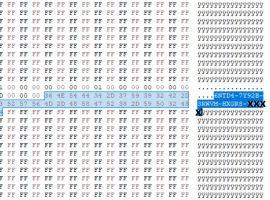 Windows key in Hexadecimal